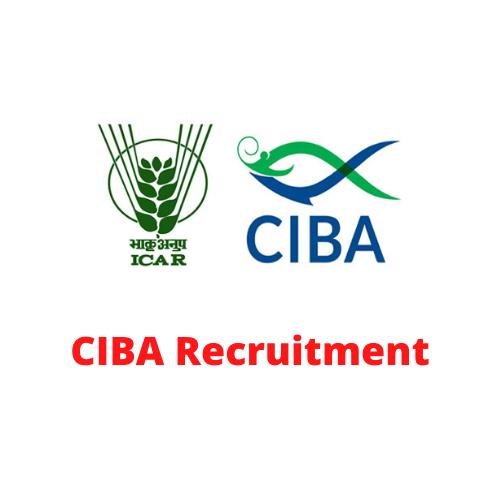CIBA Chennai Recruitment